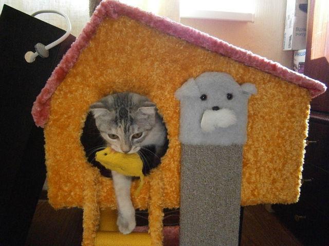 Как сделать своими руками кукольный домик для игрушек 918